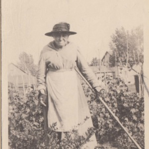 Elderly Fairview Woman