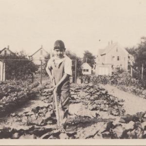 Young Gardener at work