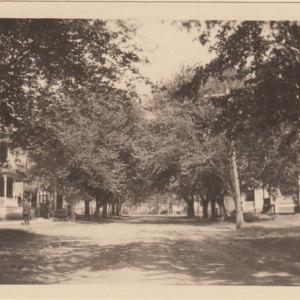Trilby Avenue